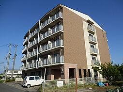 滋賀県高島市新旭町深溝の賃貸マンションの外観