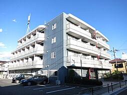 市川駅 4.3万円