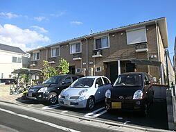 [テラスハウス] 東京都葛飾区奥戸6丁目 の賃貸【/】の外観