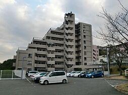 ベルヴィ香椎十番館[5階]の外観