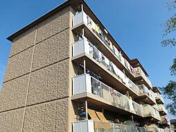 金ヶ森ハイツ[4階]の外観