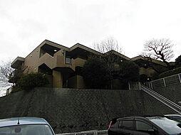 ヴィレッジ[1205号室]の外観