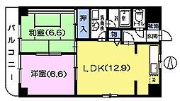 ハイム川口[2階]の間取り
