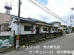 [テラスハウス] 大阪府枚方市招提平野町 の賃貸【/】の外観