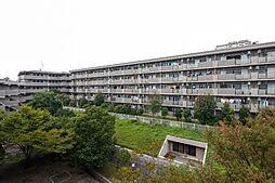 JR東海道本線 横浜駅 バス19分 横浜新道下車 徒歩7分の賃貸マンション