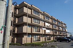 滋賀県近江八幡市鷹飼町北2丁目の賃貸マンションの外観