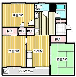神奈川県川崎市多摩区菅6丁目の賃貸マンションの間取り
