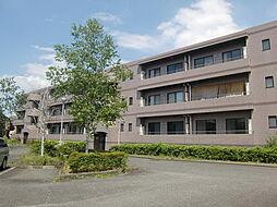 東京都八王子市下恩方町の賃貸マンションの外観