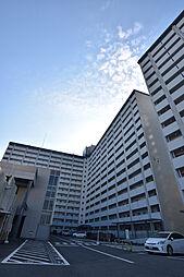 大阪府堺市南区若松台1丁の賃貸マンションの外観