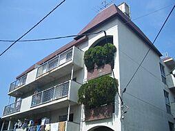 神奈川県横浜市南区共進町1丁目の賃貸マンションの外観