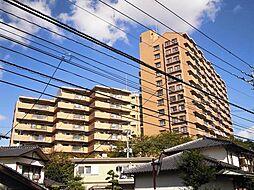 ソロン名島[1108号室]の外観