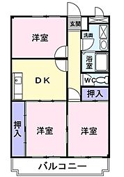 愛知県岡崎市緑丘1丁目の賃貸マンションの間取り