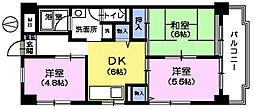サンハイム茂呂[6階]の間取り