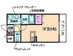 Avenue Haru(アベニュー・ハル)[3階]の間取り