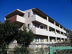 コーラルコート(Coral Court)[3階]の外観