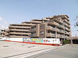 プレステージ加古川VI[411号室]の外観