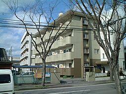 サンハイツ三嶋[4階]の外観