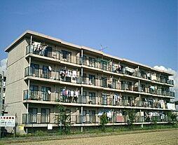 栗東ハイツ[2階]の外観