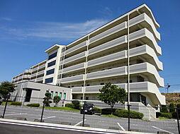 滋賀県彦根市竹ケ鼻町の賃貸マンションの外観