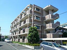 神奈川県平塚市中原1丁目の賃貸マンションの外観