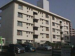 中島第5ビル[401号室]の外観