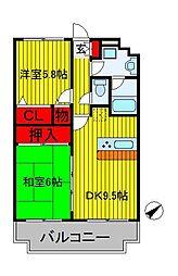 千葉県白井市西白井1丁目の賃貸マンションの間取り