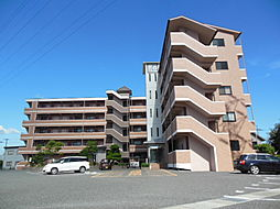 滋賀県愛知郡愛荘町市の賃貸マンションの外観