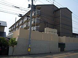 シーサイドアベニュー古賀[203号室]の外観