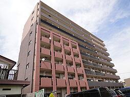 埼玉県三郷市谷口の賃貸マンションの外観