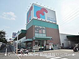 [一戸建] 大阪府枚方市長尾家具町4丁目 の賃貸【/】の外観