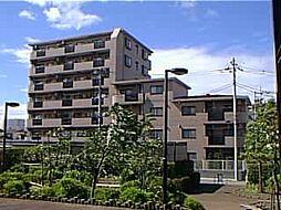 グランシエロ川口本町[702号室]の外観