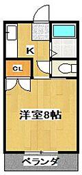 稲益ハイツ[203号室]の間取り