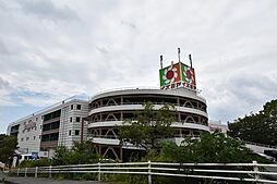 [一戸建] 大阪府松原市西野々2丁目 の賃貸【大阪府 / 松原市】の外観