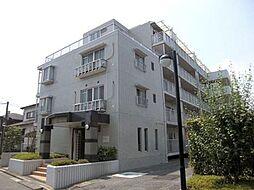 埼玉県さいたま市南区松本1丁目の賃貸マンションの外観