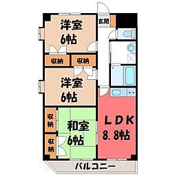 栃木県宇都宮市戸祭2丁目の賃貸マンションの間取り