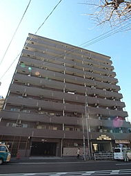 神奈川県横浜市南区白妙町3丁目の賃貸マンションの外観