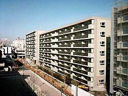 蓮根駅 10.7万円