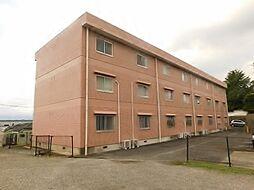 神奈川県海老名市杉久保南1丁目の賃貸マンションの外観
