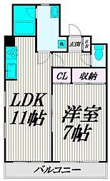Sakuraマンション[301号室]の間取り