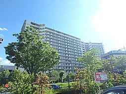 東京都稲城市若葉台2丁目の賃貸マンションの外観