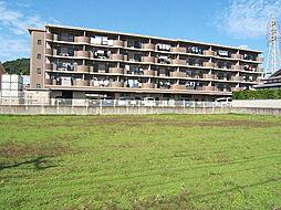 キャッスル川久保[4階]の外観
