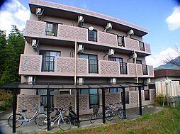 メイプルハウス[101号室]の外観