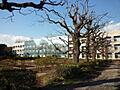 国立千葉大学園...