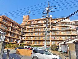 神奈川県海老名市東柏ケ谷2丁目の賃貸マンションの外観