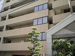コートハウス槇[601号室]の外観
