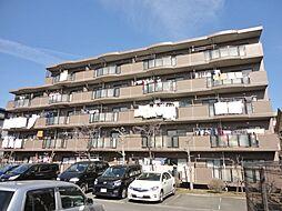 フォレストマンション[2階]の外観
