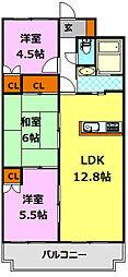 栃木県小山市乙女2丁目の賃貸マンションの間取り