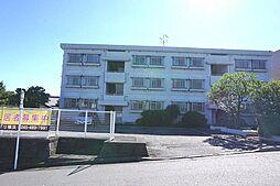 神奈川県横浜市泉区緑園5丁目の賃貸マンションの外観