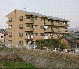 サウスヴィレッジ[402号室]の外観