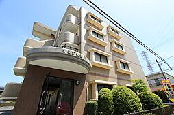 神奈川県平塚市長持の賃貸マンションの外観